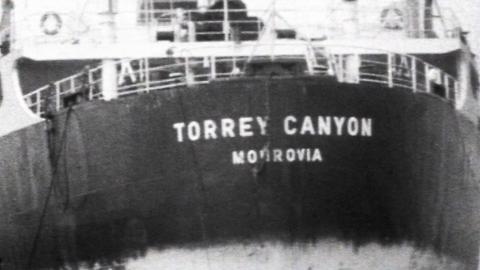 SS Torrey Canyon Clean-Up