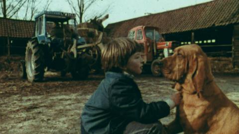 Diogelwch ar y Fferm (Safety on the Farm)
