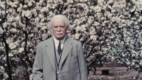 Lloyd George: farming, officiating and breakfasting
