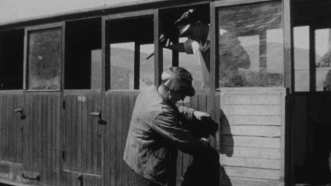 Ffestiniog Railway - Rough Cut