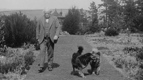Lloyd George with Dogs and Book