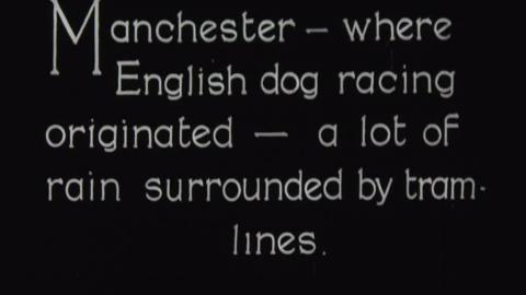 Manchester - Where English Dog Racing Originated...