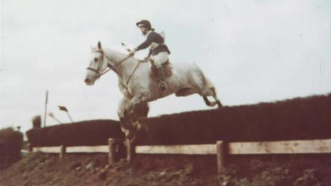 An Englishman's Horse