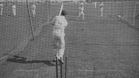 Cricket Again!