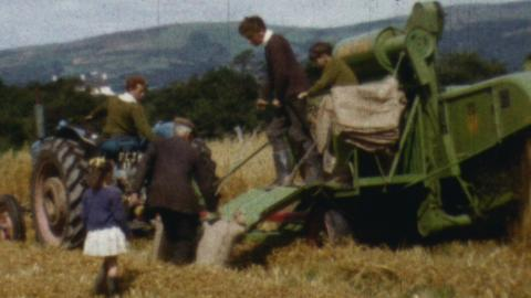 Talybont Show and Corn Cutting