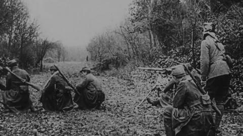 French Machine Gun in the Wooded Country of the Argonne