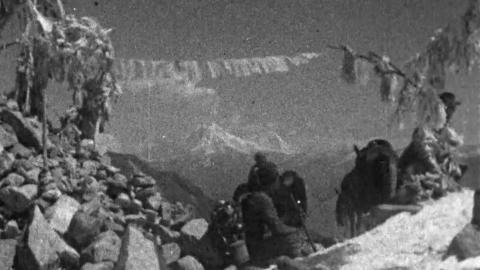 Everest - Shebbeare