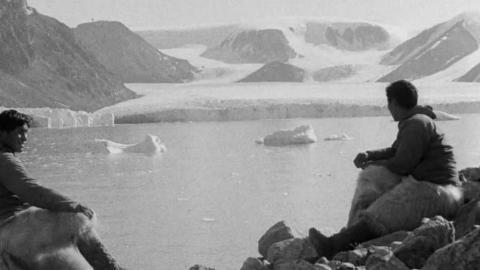 Arctic: Haig Thomas