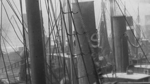 North Sea Fisheries, North Shields (1901)