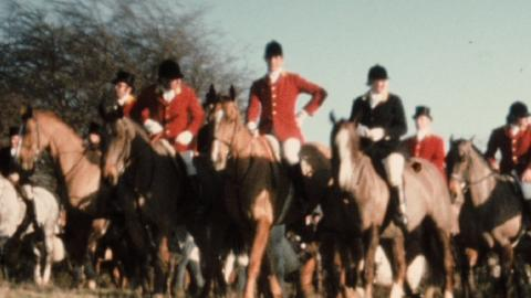 Surrey Union Boxing Day Hunt