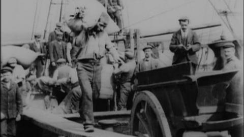 Lady Mostyn Discharging Grain at Irvine (c.1901)