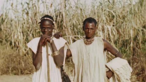 African Gathering