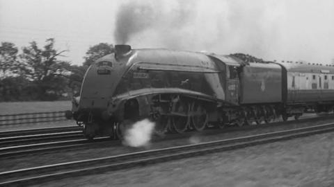 Elizabethan Express