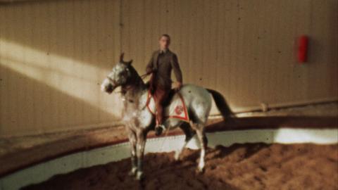 Horses at Ascot, Winter Quarters, Ascot