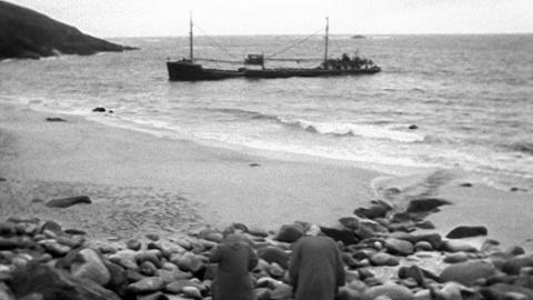 The Alacrity Shipwreck