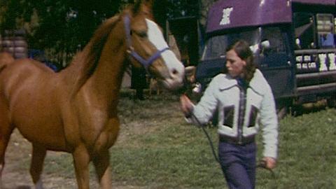 Bungay May Horse Fair