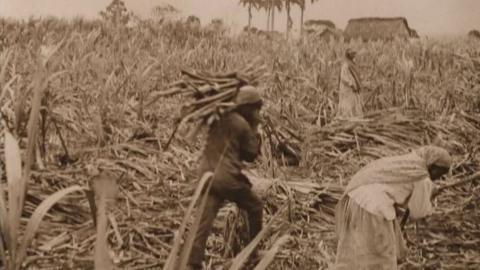 Mauritius 1941
