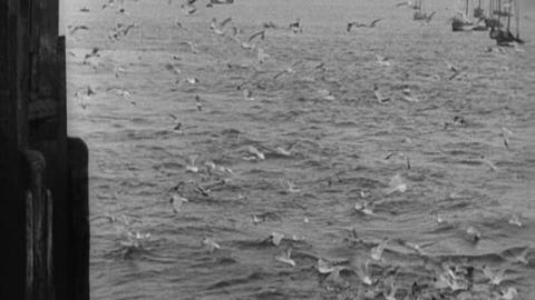Waves at Southport (1902)