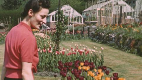 Garden at Park Lodge